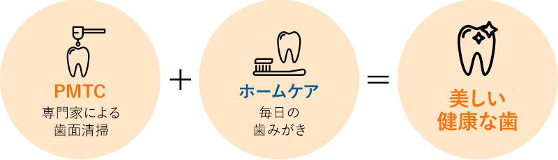 PMTC:専門家による歯面清掃+ホームケア:毎日の歯みがき=美しい健康な歯